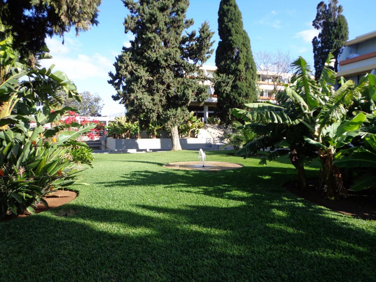 Foto 39 s complex maravilla for Botanische tuin tenerife